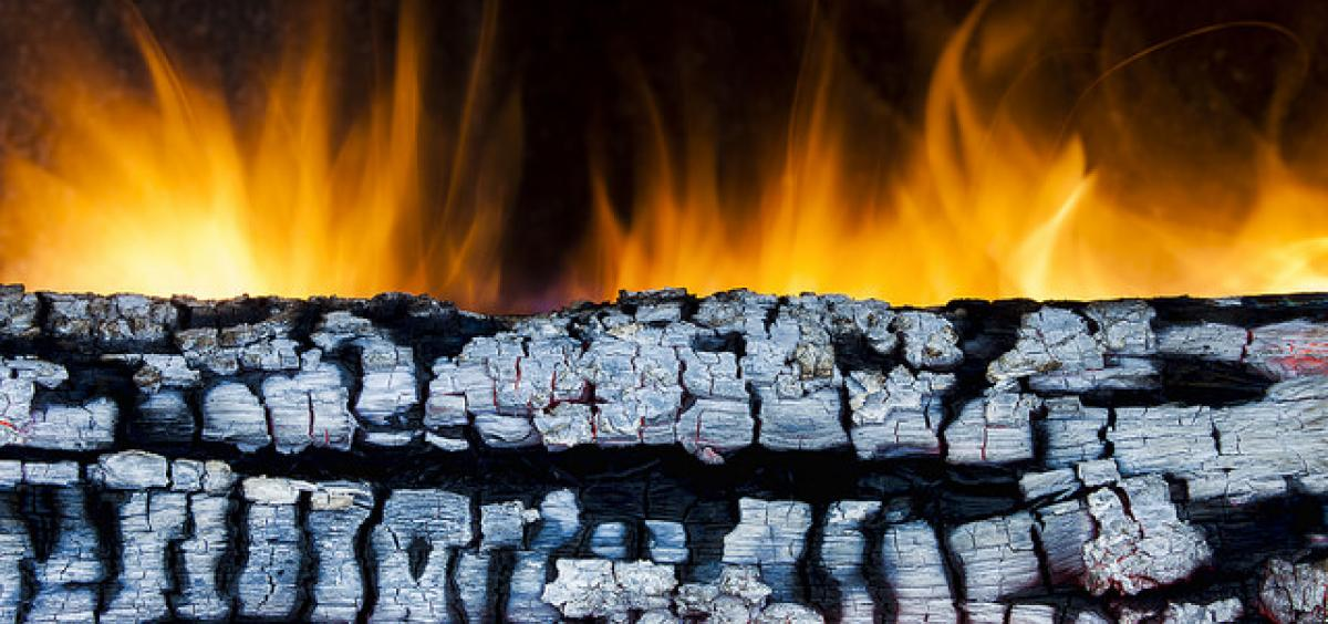 burning log image