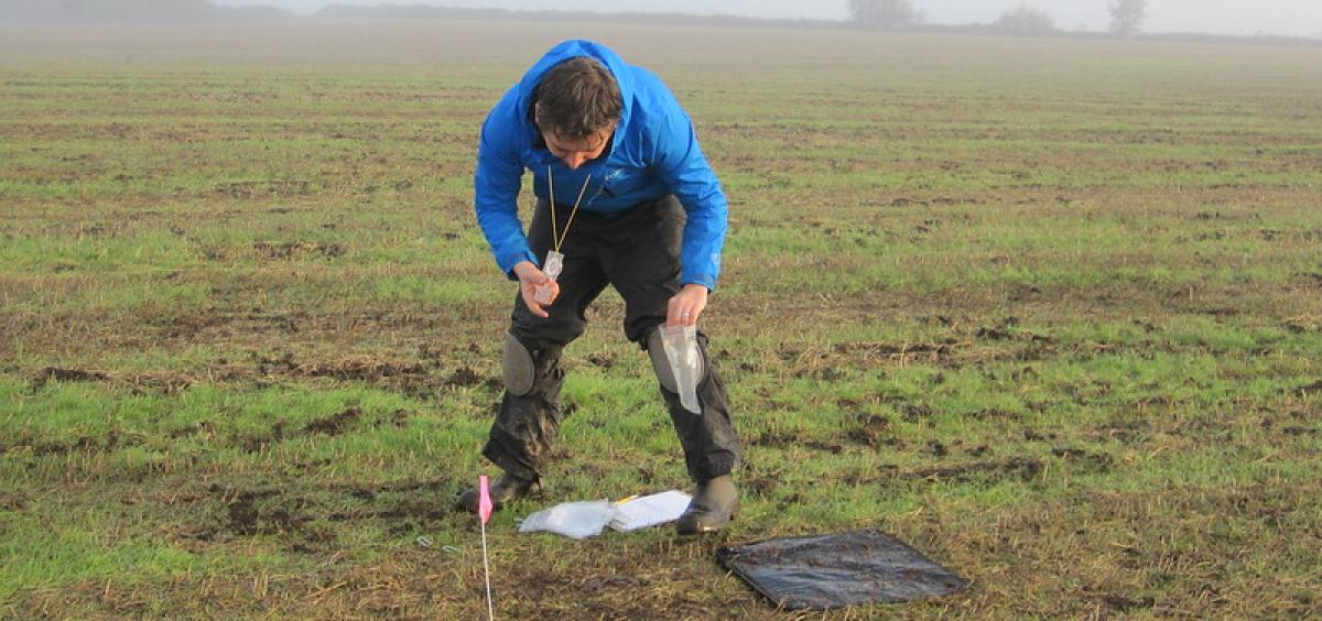 Rory Mc Donnell scouting for slugs infested by parasitic nematode.