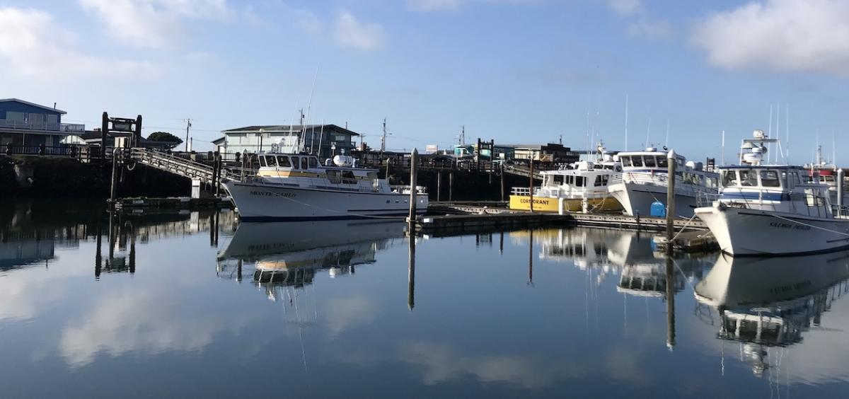 Image of boats at a marina with blue sky overhead