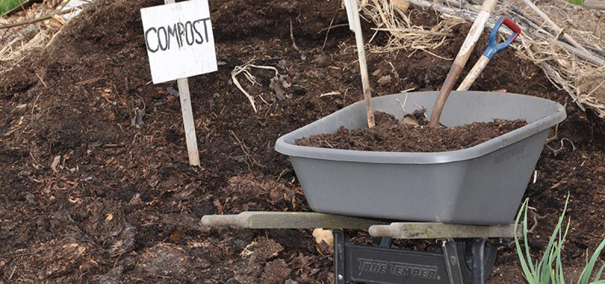 Compost improves soil in many ways.