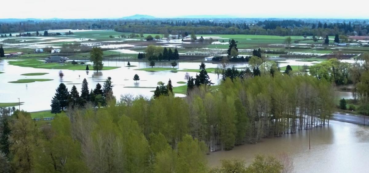 Corvallis flooding