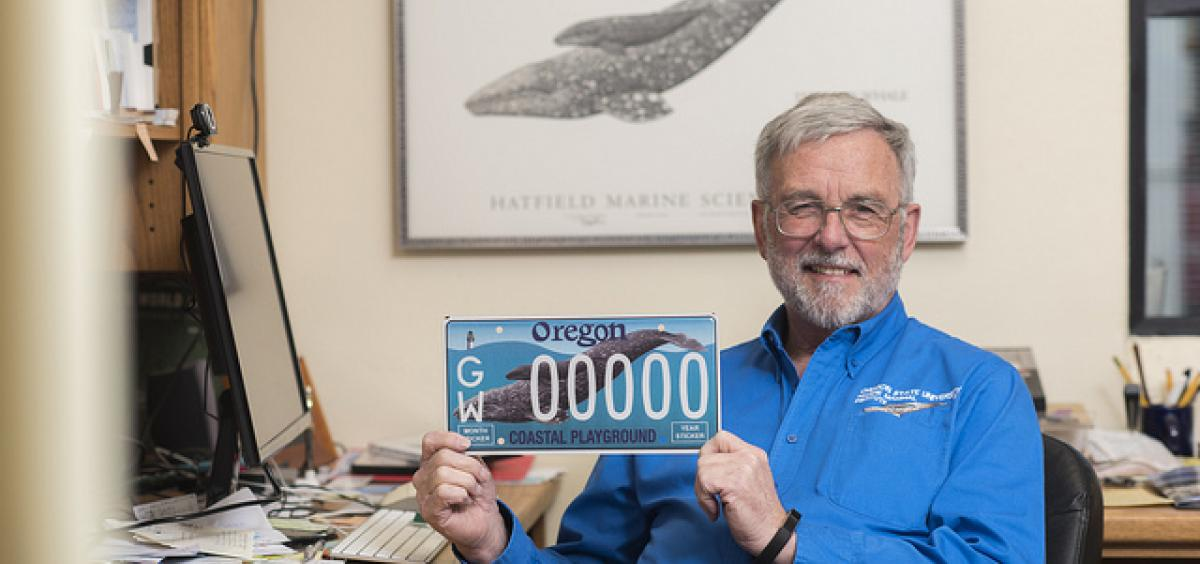 A new Oregon license plate, with the image of a gray whale mother and her calf, will be available at Oregon Department of Motor Vehicles offices throughout ...