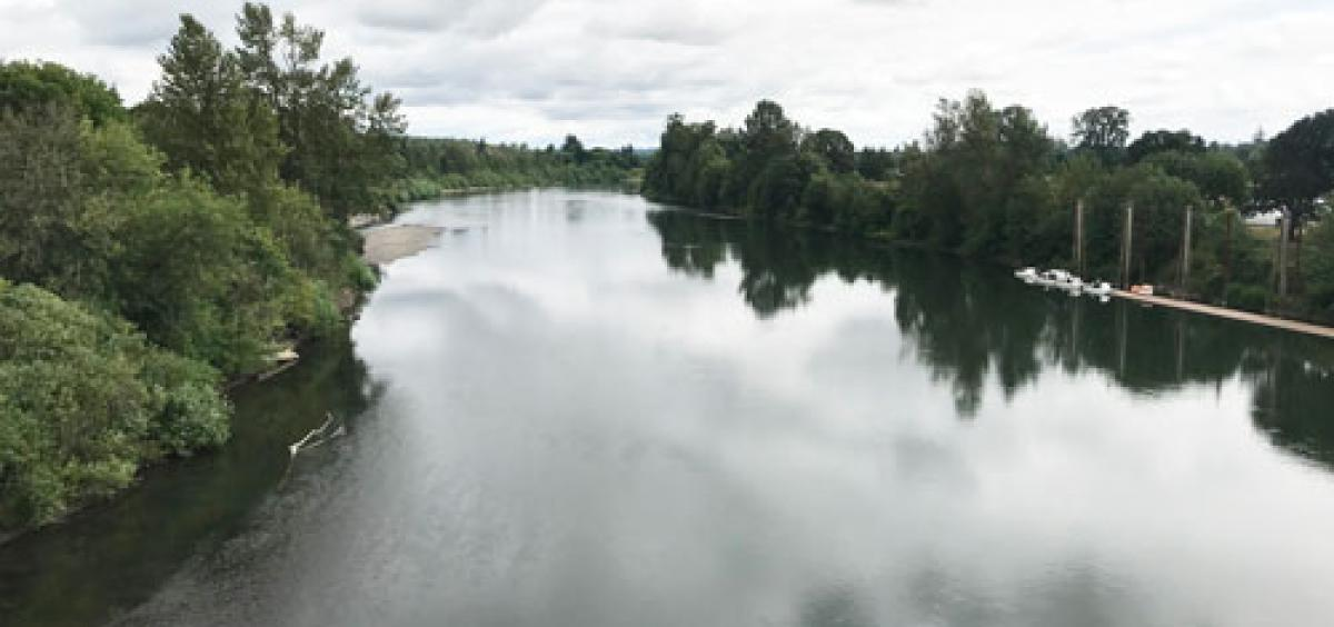 The Willamette River, looking north from the Harrison Street Bridge in Corvallis