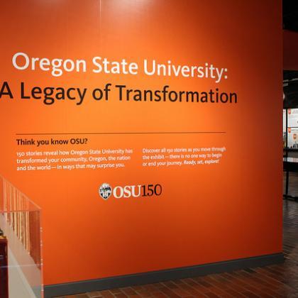 image of exhibit wall