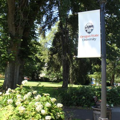 Image of Oregon State University logo on white banner hanging from pole.