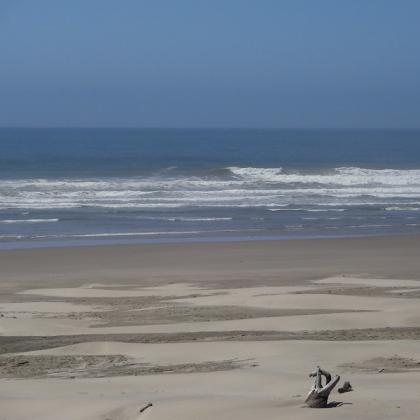 Image of sandy beach and ocean waves at Driftwood Beach State Recreation Site.