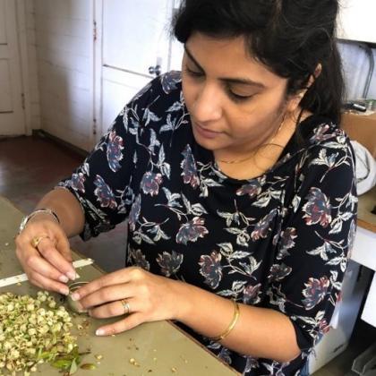 Priyadarshini Chakrabarti