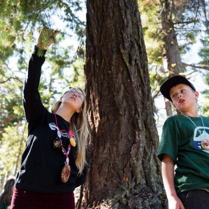 An Outdoor School counselor (left) and participant look at the needles on a tree on a hike at Camp Tamarack