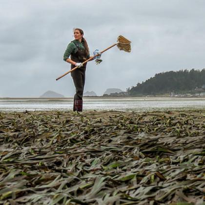 Sea grass research