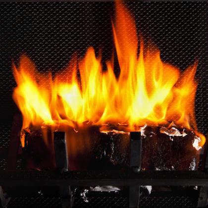 Fireplace Photo by USDA.