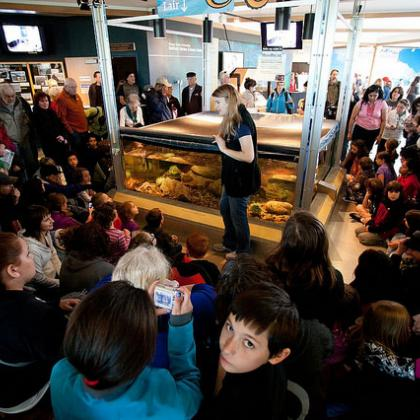 Visitor Center crowd at Hatfield Marine Science Center