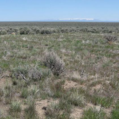 Burned and unburned areas in the Hart Mountain National Antelope Refuge
