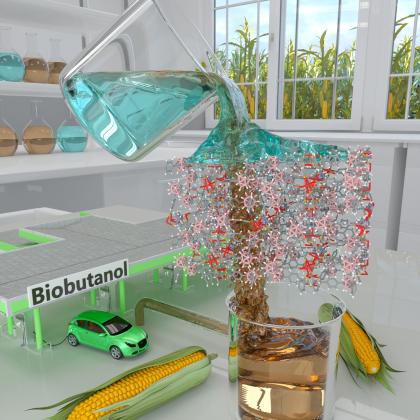 Biobutanol separation method