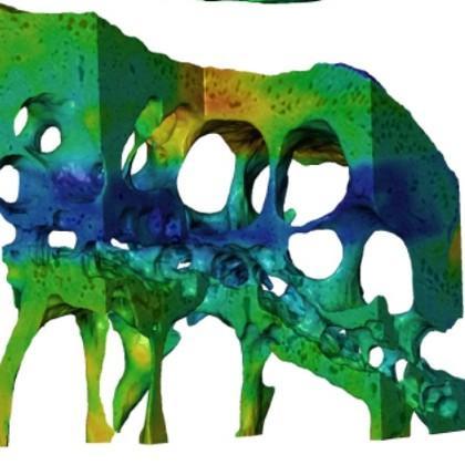 Nanoscale mouse joint image