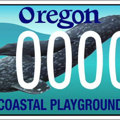 license plate featuring a gray whale and her calf