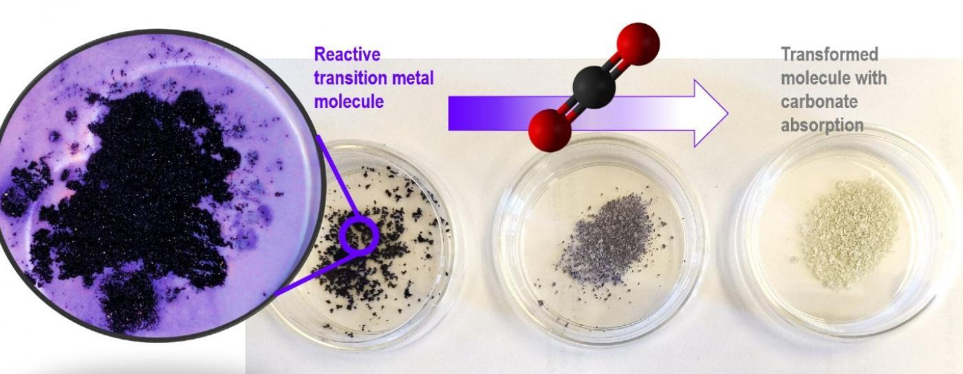 carbon capture process